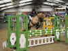 The Pony Club Dengie Winter League Show Jumping Championship